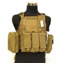 Chaleco Plate carrier TAN